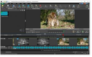 VideoPad Video Editor registered Key